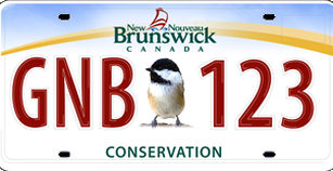 Conservation Plate